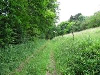 Wanderweg Rundweg Nr. 3